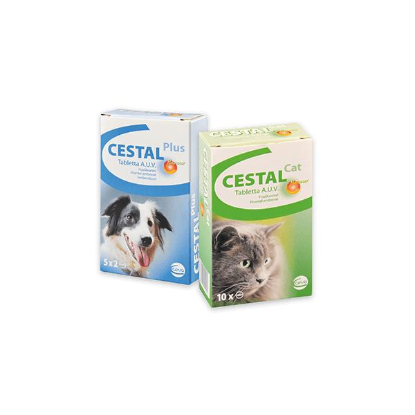 cestal féreghajtó kutya a szájból ürülék szagkezelés